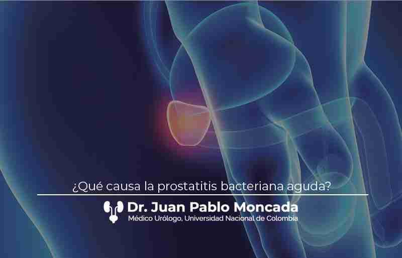 ¿Qué causa la prostatitis bacteriana aguda?